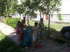 PC filiala Mangalia voluntariat-06 (Small)