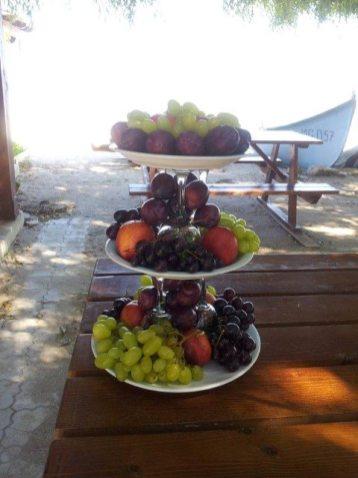 Restaurant_Sat_Pescaresc_Venus-44. desert-natur