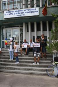 dsvsa-cta-protest-caini-mangalia