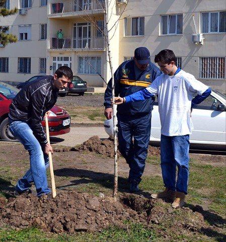 plantari-puieti-tinerii-liberali-mangalia-25