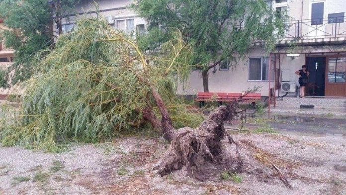 ravagii-furtuna-mangalia-11-07-2014-foto-Andreea-Dima-11 (Small)