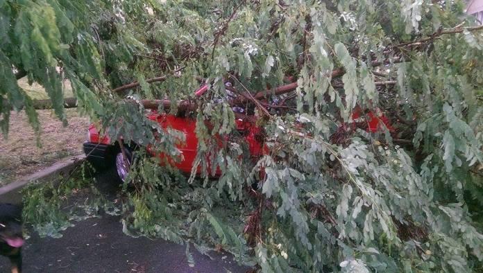 ravagii-furtuna-mangalia-11-07-2014-foto-Catalin-Coches-03