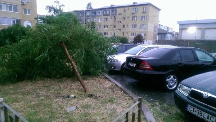 ravagii-furtuna-mangalia-11-07-2014-foto-Catalin-Coches-06