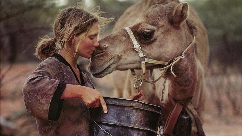Image result for robyn davidson camel affection