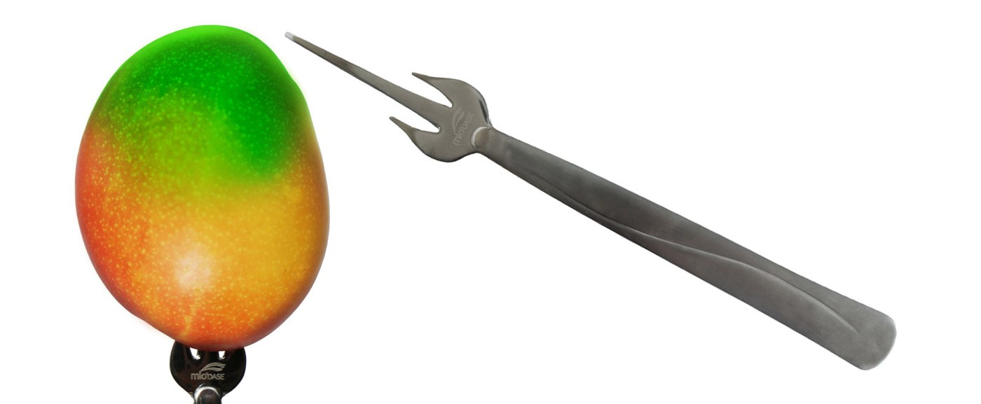 Mango on a stick!