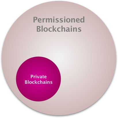Private vs Permissioned Blockchains