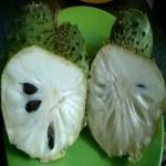 Esta fruta é fantástica e deliciosa.Veja os benefícios de consumi-la!