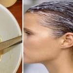 Soluções naturais para deixar seus cabelos mais saudáveis e hidratados, Aprenda!
