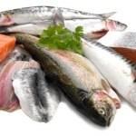 Peixes que é melhor evitar…