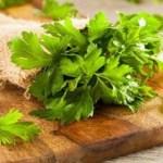 Soluções a base de salsa que ajudam a eliminar infecções urinárias.