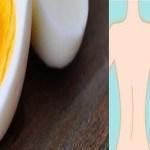5 Alimentos que você tem de pôr em seu café da manhã para acelerar a perda de peso.