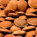 Sucupira: planta eficaz contra a artrite, artrose, reumatismo, inflamações nas articulações e outras!