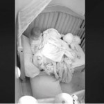 Pai deixa pitbull de quase 50 quilos dormir no berço com o bebê, as imagens capturadas estão dando o que falar