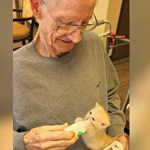 Centro de repouso para idosos e lar de animais se unem para fazerem todos felizes