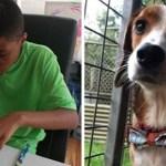 Jovem costura lindas gravatas para ajudar animais abandonados a serem adotados