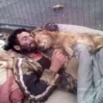 Morador de rua dorme abraçado ao seu cão, um anjo de quatro patas que nunca o abandona