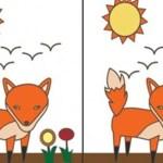 Teste de personalidade: Qual é a primeira diferença que você vê entre estas imagens?