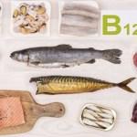 13 alimentos com alto teor de vitamina B12