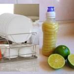 Receita de sabão caseiro ecológico usando limão e vinagre