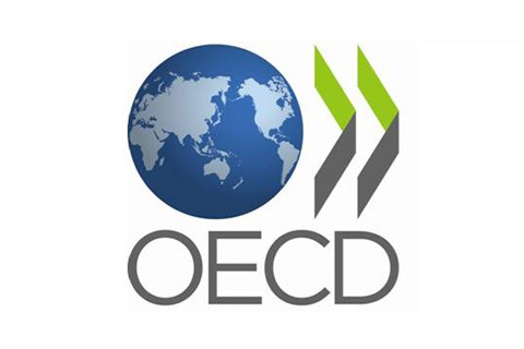 OECD Principles and Guidelines Responsible Business