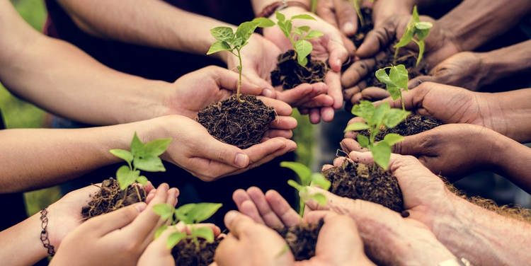 Global standard-setters unite on sustainability reporting