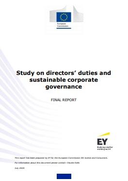 EC corporate governance report draws criticism