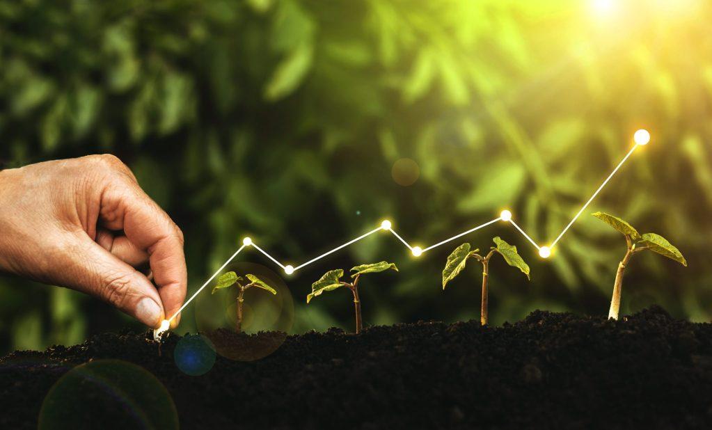 Biodiversity, growth, stocks, shares