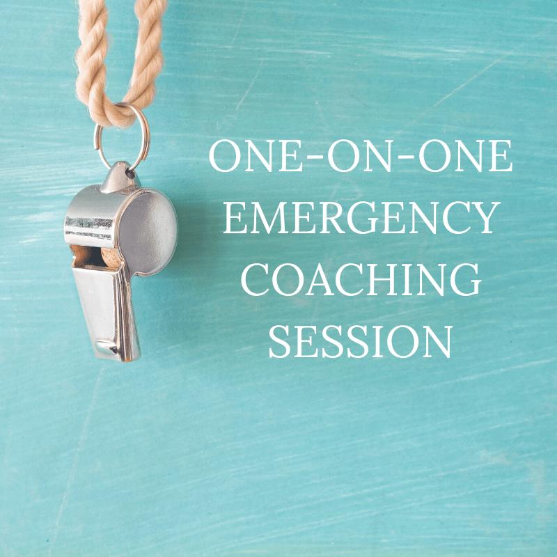 Single Emergency Coaching Session