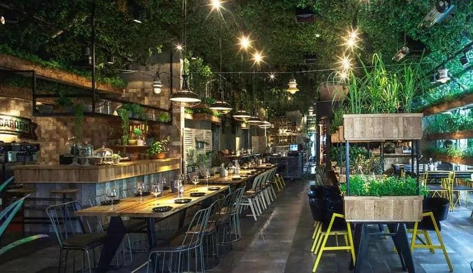 Segev kitchen garden2