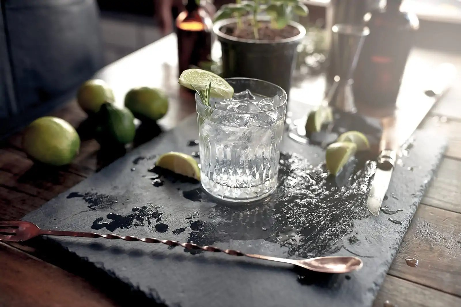 gin-voor-stofwisseling