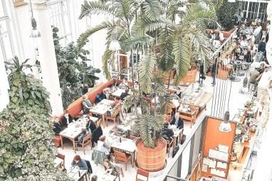 Wien (palmenhaus 3)
