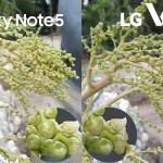 lg v10 vs samsung galaxy note 5 camera review comparison4