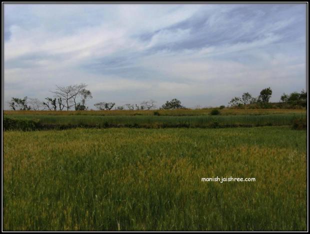 Landscape around Naukuchiatal