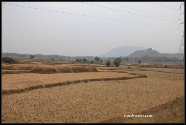 Farms along NH5