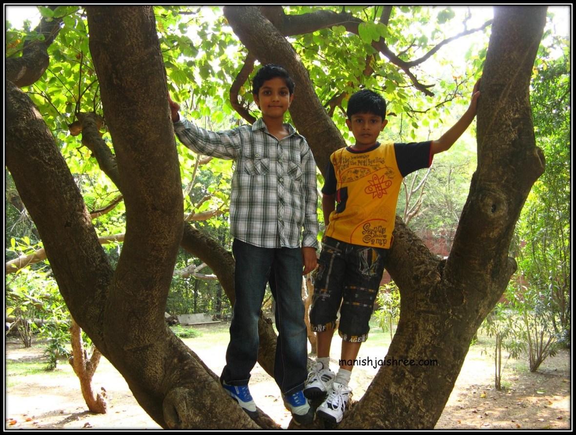 In Aga Khan palace greens