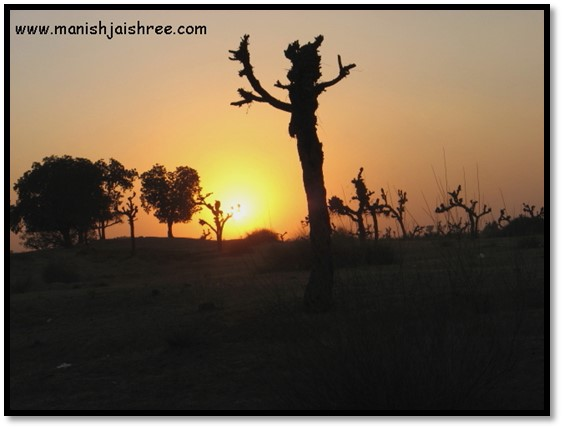 The Sunset in Nawalgarh countryside