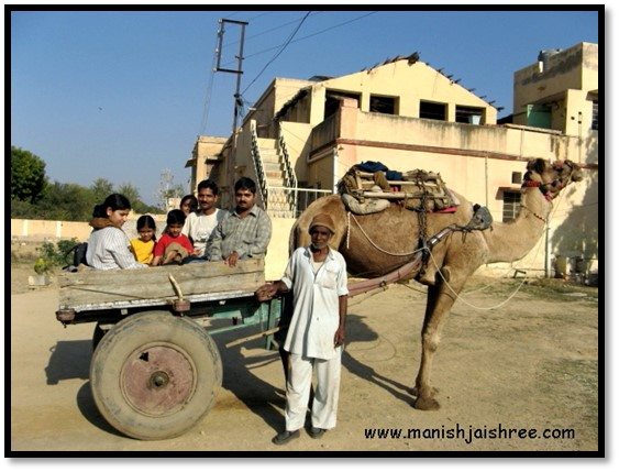 camel cart is ready