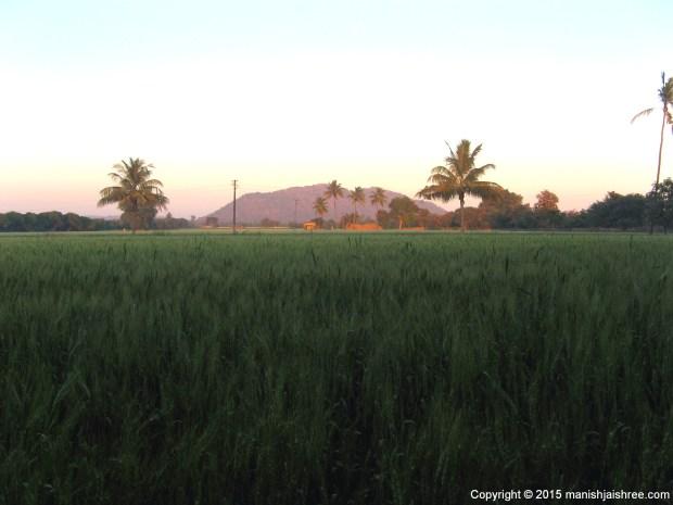Sunset at Gir Jungle Resort, Sasan Gir