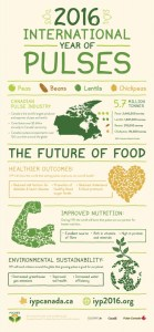 IYP_Infographic_Poster_2015_eng_update
