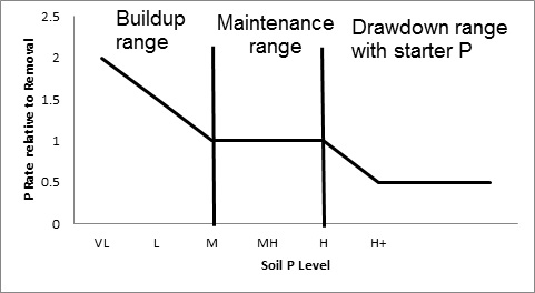 Are your fields in the build-up, maintain, or draw-down phase for Phosphorus fertility?