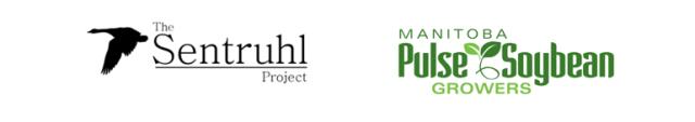 MPSG-SENTRUHL-letterhead