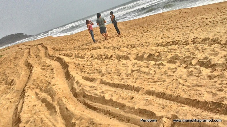 Candolim Beach in Goa, Travel blogger, Five things to do in Goa