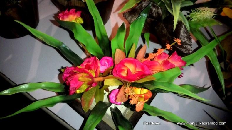 Flowers, Tiara, Northeast, Festival