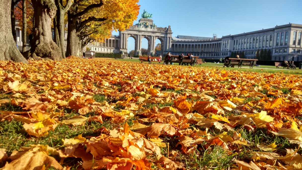 Cinquantenaire Park, Jubel Park in Dutch