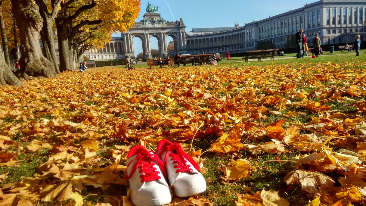 My shoes in Brussels