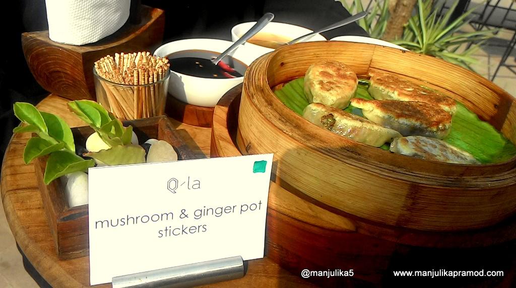 Qila, Qutub Minar, New Delhi, Snacks, Mushroom and Ginger Pot Stickers