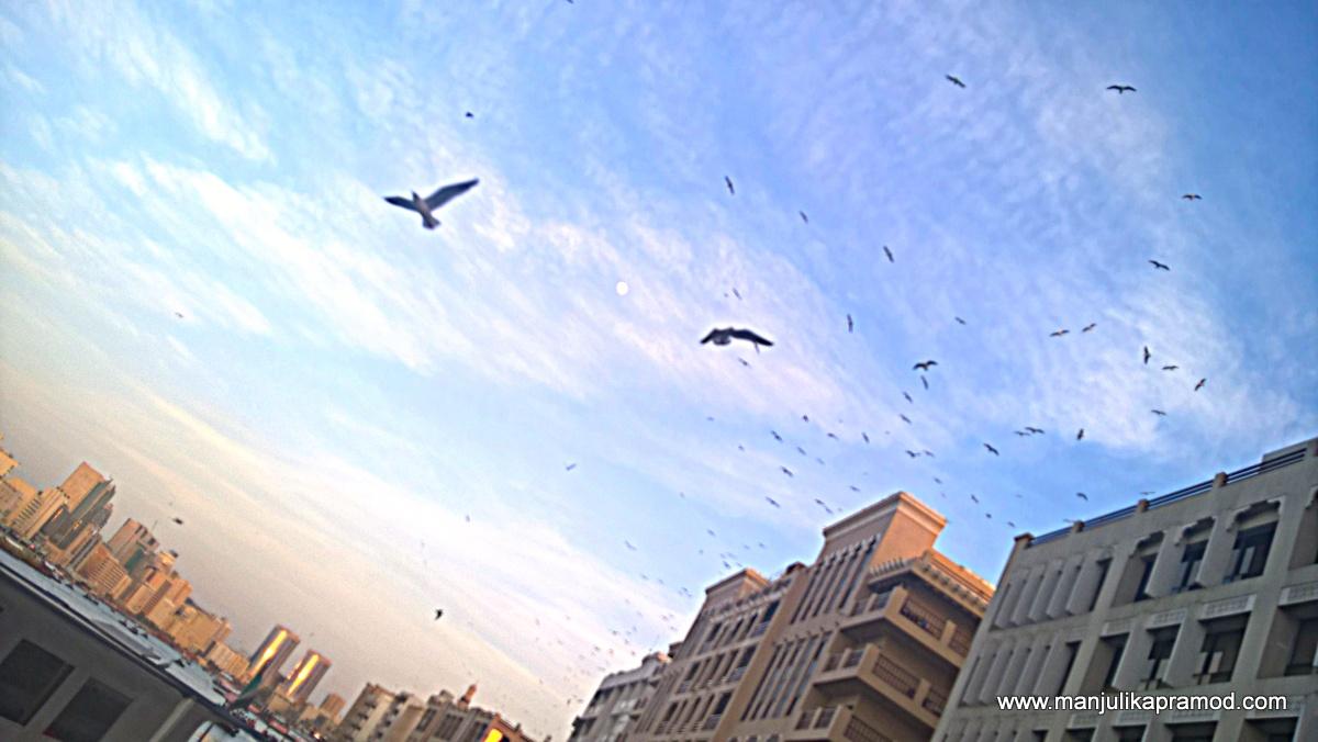 Dubai Heritage- Art and Culture