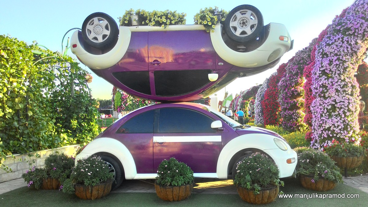 Cars, Flowers, Dubai Miracle garden, Pictures