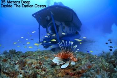 Blue Safari, Indian Ocean, Submarine, Underwater Activity, Travel