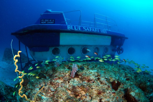 BS 1100, Submarine, Indian Ocean, Mauritius